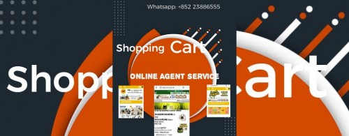 Online Shopping Agent Services
